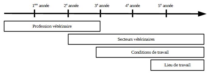 stages et transition professionnelle dans l u2019enseignement