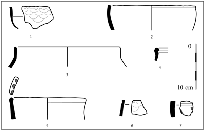 Figure 10 : Extrait du corpus céramique de l'habitat.Figure10: Selected forms from the dwelling.