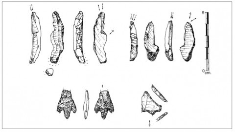 Figure 29 : Armatures recueillies dans le « Locus 31 » (dessin P. Forré).Figure 29: Projectile points from Locus 31.