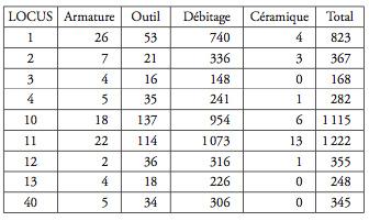 Tableau 2 : Les Chaloignes : décompte général de l'outillage par locus ou par zone. Table 2: Les Chaloignes: general summary of assemblage, by loci or zones.