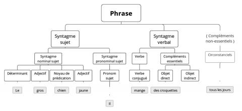 Figure2: La phrase type au CE2