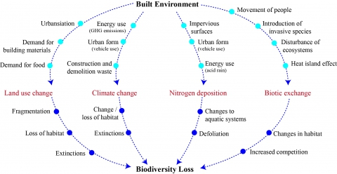 Figure 1. Built environment drivers of biodiversity loss.