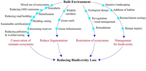 Figure 2. Built environment responses to biodiversity loss.