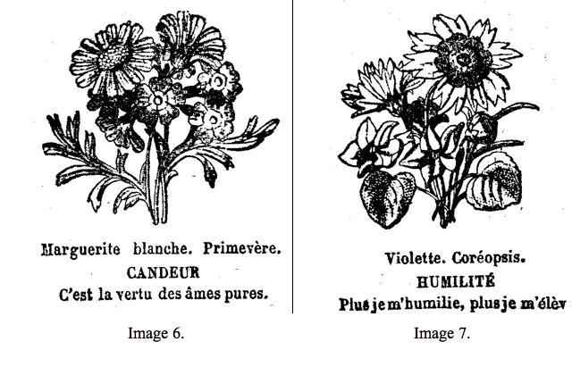Dites Le Avec Des Fleurs Le Code Symbolique Floral Ou Comment