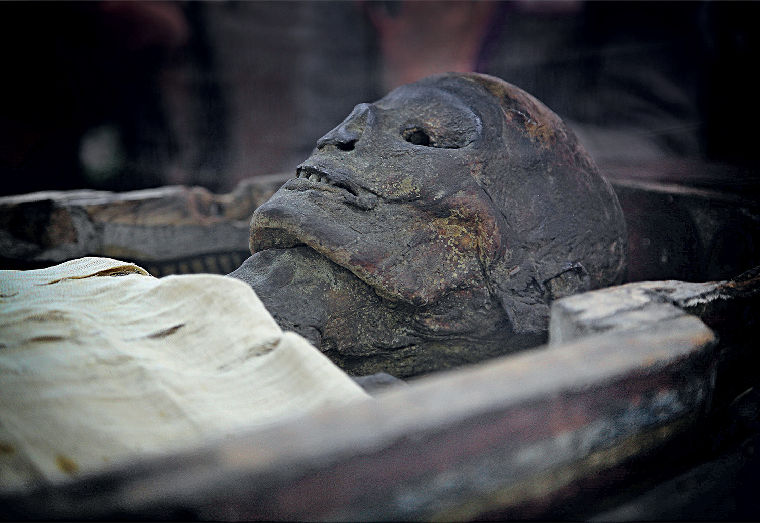 La Part Des Anges Rouen the egyptian mummy in uk museums: cultural histories and