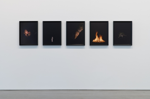 Installation View of Catherine Opie at Regen Projects, Los Angeles