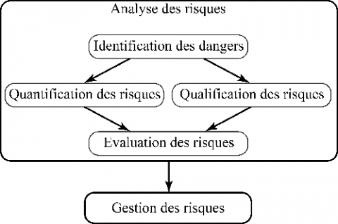 Figure 2. Processus élargi de gestion des risques/Extended risk management process
