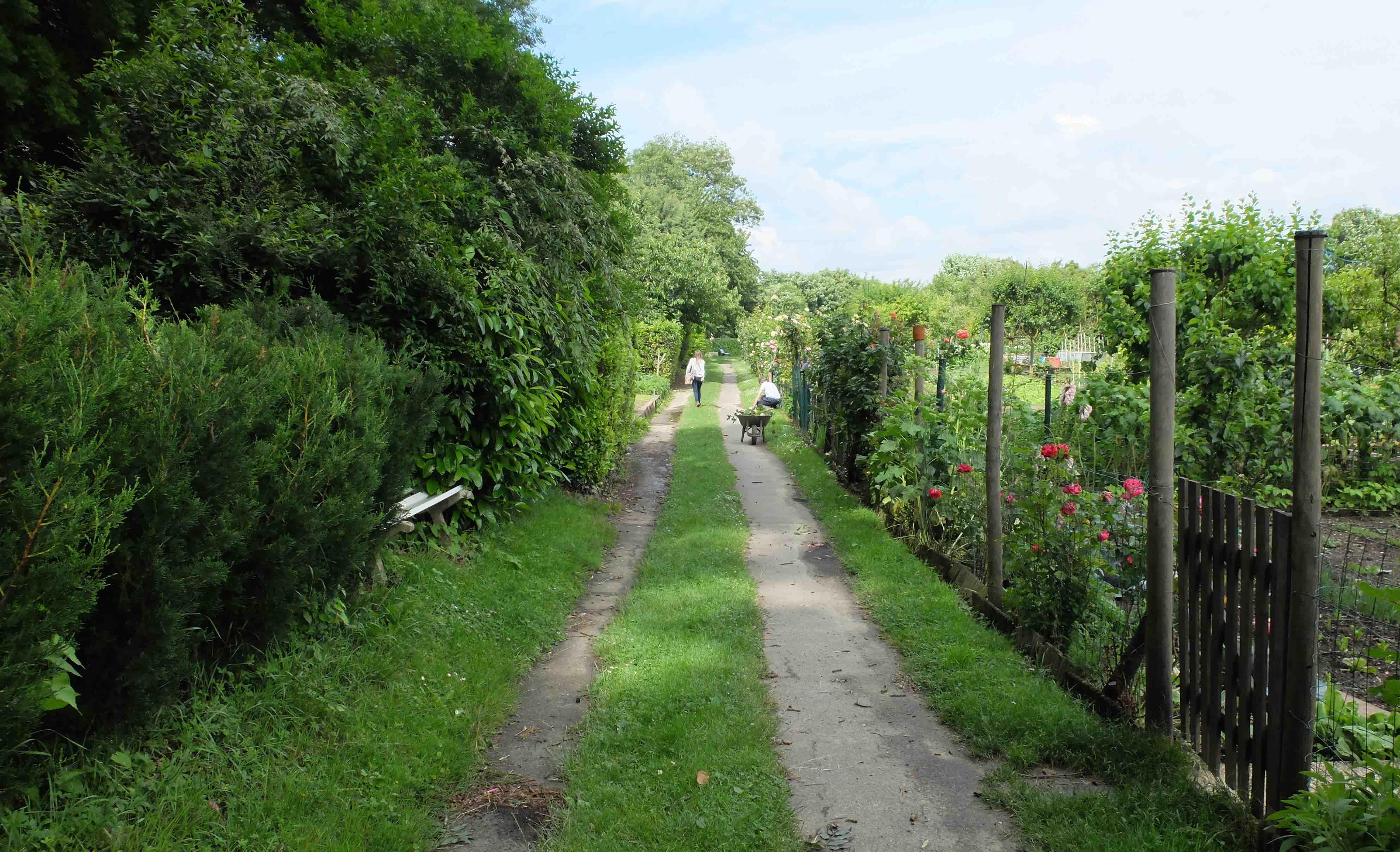 Route de jardin datant