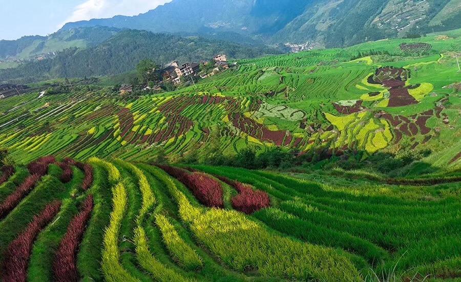 27 China Landscape Ideas Landscape China Travel Scenery